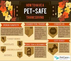 pet thanksgiving arrow veterinary service llc