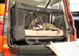 dog friendly honda element concept transforms suv into pet hauling