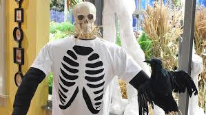 Halloween Shirt Costumes Rib Cage T Shirt U0026 Video Martha Stewart