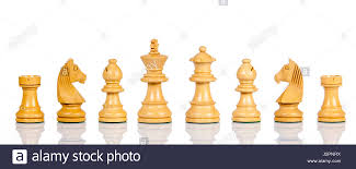 wooden chess set of chess figures chess pieces isolated on white