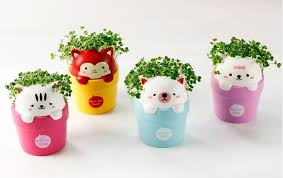 cute pots for plants this pot plant can charge your phone through photosynthesis