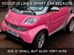 smart car pink symbol by izzy badran