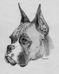 black and white pencil drawings of animals 10 incredible pencil