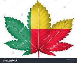 Benin Flag Benin Flag Painted On Cannabis Marijuana Stock Illustration