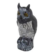 41cm brown owl bird scarer bunnings warehouse