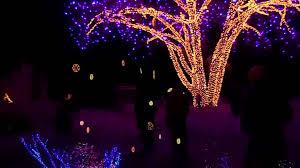 Hudson Garden Christmas Lights December 2013 Youtube