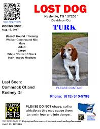 bluetick coonhound in tennessee lost dogs tennessee home facebook