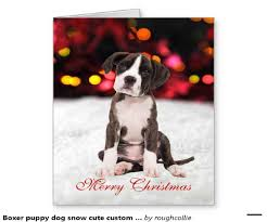 dog rescue christmas cards christmas lights card and decore