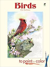 birds to paint or color dover art coloring book dot barlowe