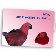 parrot greeting cards responsive sheffield blue zen cart