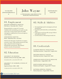 Best And Updated Resume Format by 8 Updated Cv Format 2017 Resume Sections