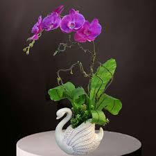Artificial Orchids Orchid Sf Artificial Orchid At080