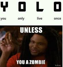 Yolo Meme - 77 best y o l o images on pinterest yolo ha ha and funny stuff
