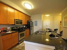 the morgan apartments chesapeake va dernis international