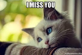 Miss You Meme - i miss you first world cat problems make a meme