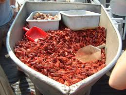 crawfish party supplies great idea for crawfish party use an boat to serve from
