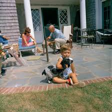 st c267 9 63 john f kennedy jr with dog shannon in hyannis