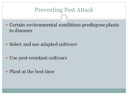 Plant Disease Control Methods - principles and methods of disease and pest control ppt video