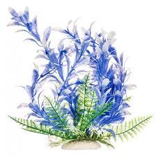 aquatop aquatop bacopa aquarium plant blue white aquarium plants