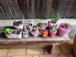 About Rock Garden by Garden Plants Near Me Darxxidecom