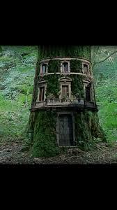 Tree Trunks Meme - pin by mauricio almeida on casa na 磧rvore pinterest window