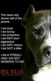 american pitbull terrier size chart proud pitbull mom t shirt pitbull unisex and short sleeves