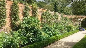 eliza gray gardens what u0027s new in the garden