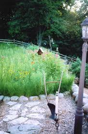 native prairie plants prairie garden restoration project u2013 utilizing minnesota native