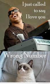 Best Grumpy Cat Meme - 52 best best of grumpy cat images on pinterest funny things