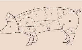 comment cuisiner un cochon les morceaux du porc et nos conseils pour les cuisiner today wecook