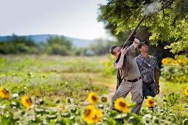 hunting guides in louisiana bird hunting stories bird hunting reviews bird hunting expeditions