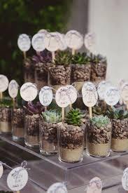 wedding unique wedding favors amazing best 25 plant wedding favors ideas on succulent