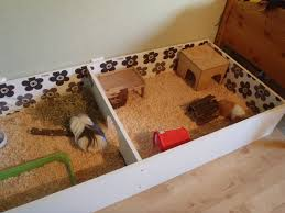 awesome ideas for guinea pig hutch and cages guinea pig hutch