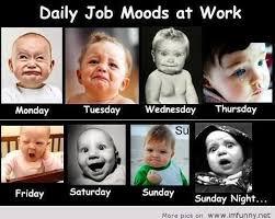 Job Memes - meme job moods