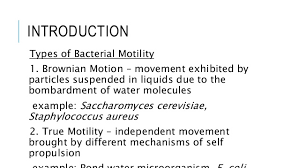 activity 2 determination of bacterial motility