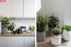 plante pour cuisine relooking cuisine travaux cuisine transformer maison créative