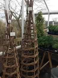 hazel willow natural obelisk at rv rogers nursery pickering