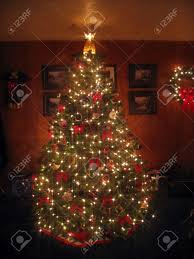 tree with displaying white lights an 8 point