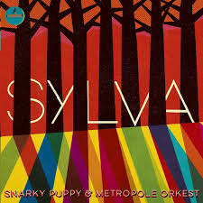 album review snarky puppy with the metropole orchestra surrey