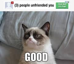 Success Cat Meme - grumpy cat gets unfriended see more funny pics at killthehydra com