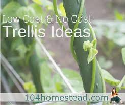 low cost u0026 no cost garden trellis ideas