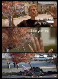 Walker Meme - tree in my face paul walker s death know your meme