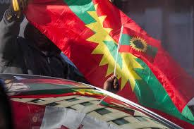 Oromo Flag Schedule Of Global Oromo Communities U0027 Protest August 16 26 Qeerroo