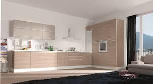 Simplelshapemodernkitchencabinets Courtagerivegauchecom - Simple modern kitchen