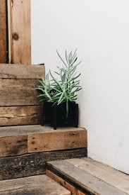 adding green to your home take aim blog planters desks and