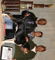 bluetick coonhound mississippi best in show daily