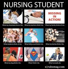 Nursing Student Meme - nusing student humor th aol image search results