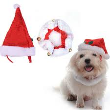 compare prices on dog christmas hats online shopping buy low
