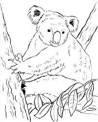 free coloring pages and reference pictures samantha bell