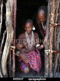 sprague photo stock 03tz017 tribal watatulu tribal family